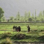 Nubra valley pictures
