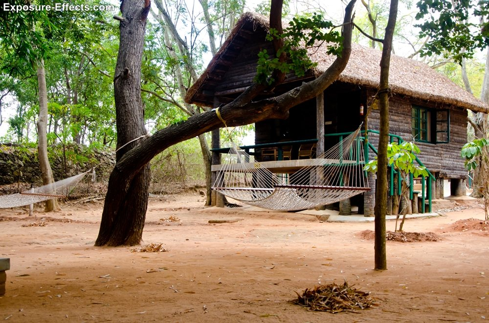 Bannerghatta bangalore jungle lodges and resorts-4-loghuts