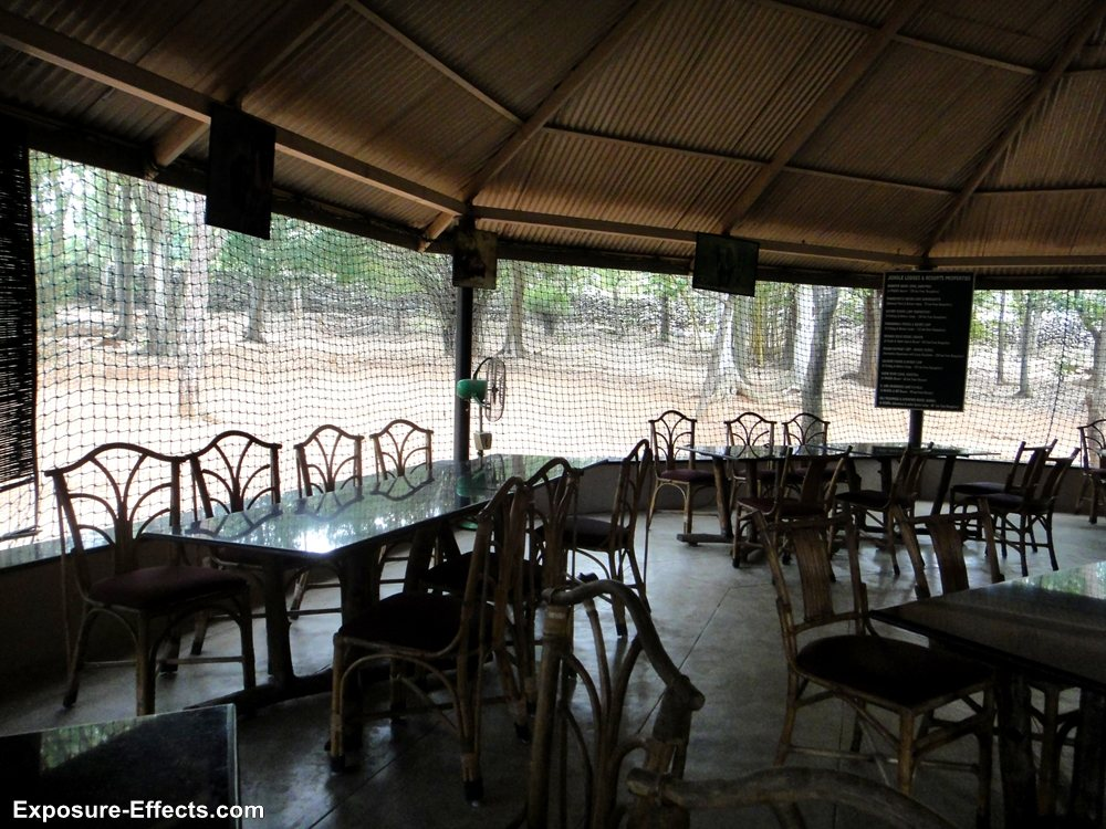 Bannerghatta bangalore jungle lodges and resorts-9