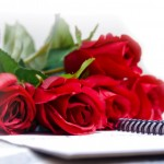 Bunch of red roses in white background