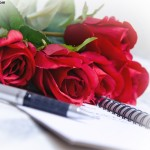 Red Roses pen and diary