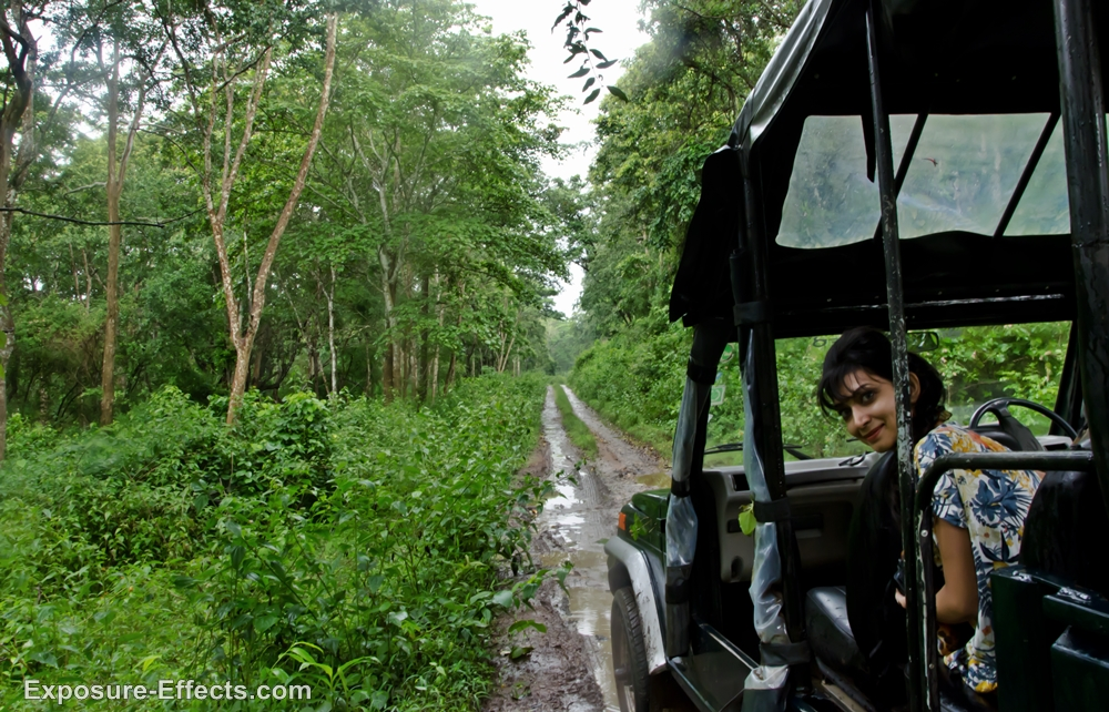 Dubare Forest Jeep Safari Jungle Lodges and Resorts coorg karnataka