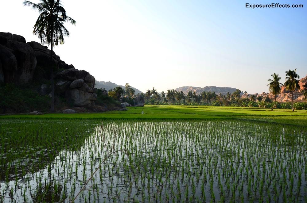 Hampi Vijayanagara Landscapes
