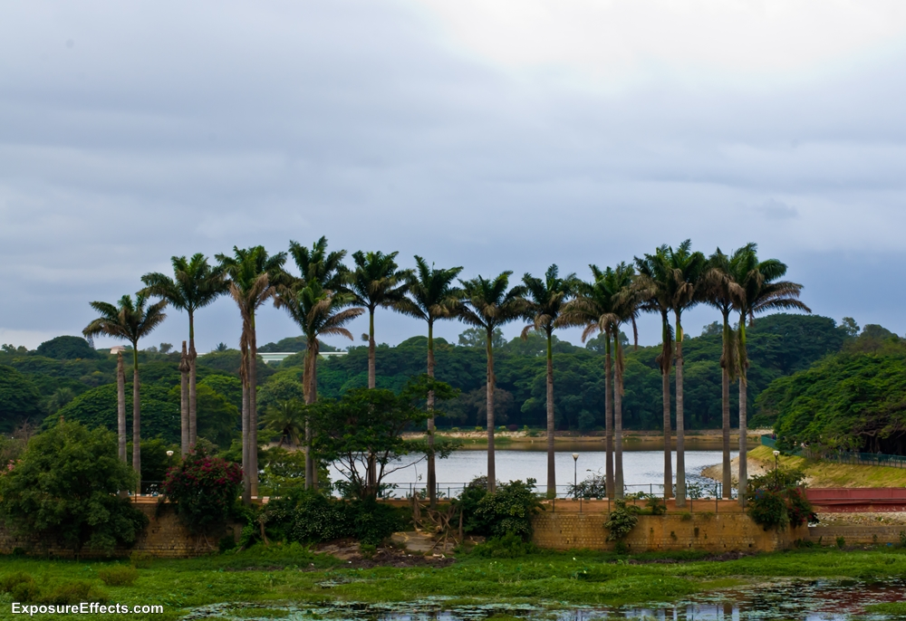 Lalbagh Botanical Garden Bangalore