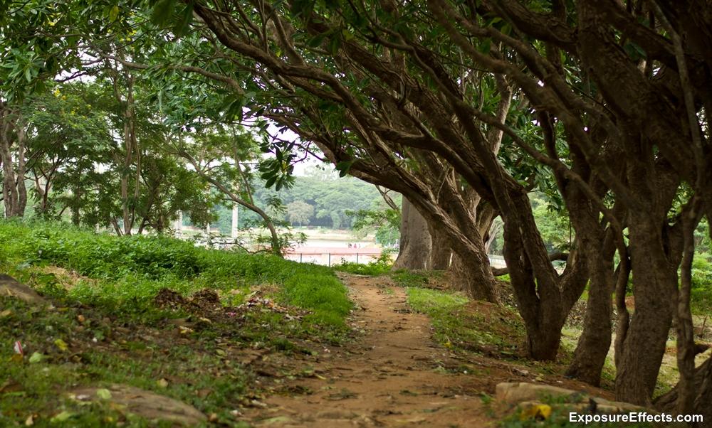 Lalbagh Botanical Garden pics Bangalore
