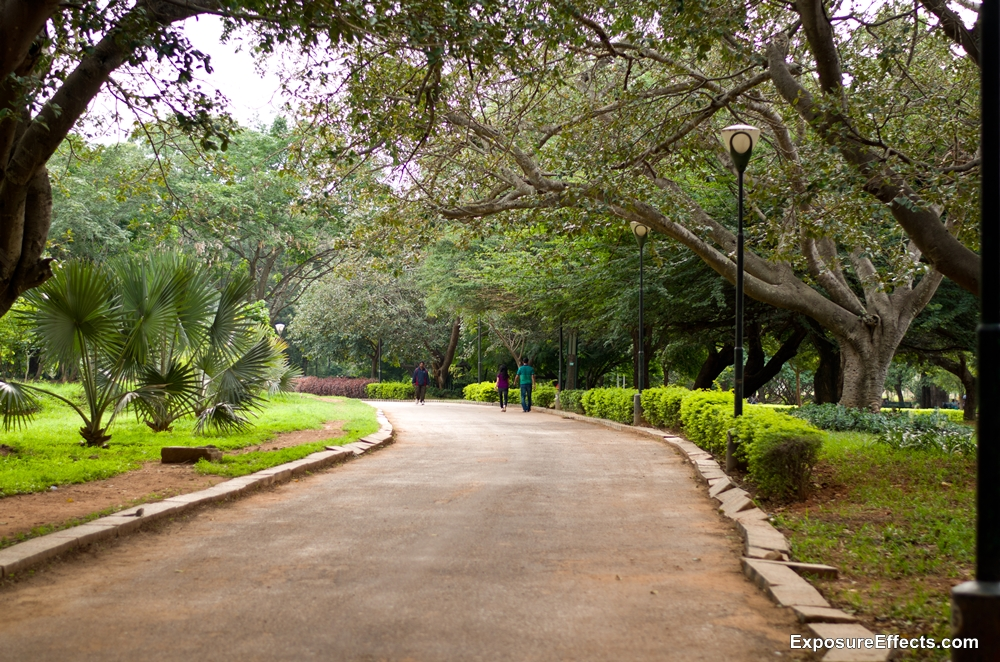 Pictures of Lalbagh Botanical Garden Bangalore