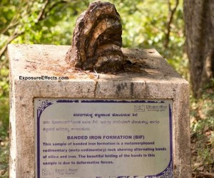 Rocks Displayed At Syntheri Rock – Dandeli , Karnataka