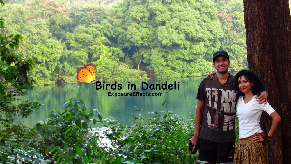 Bird Watching in Dandeli