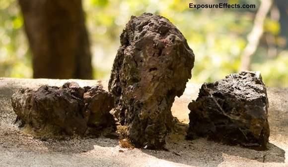 Greywacke - Rock image