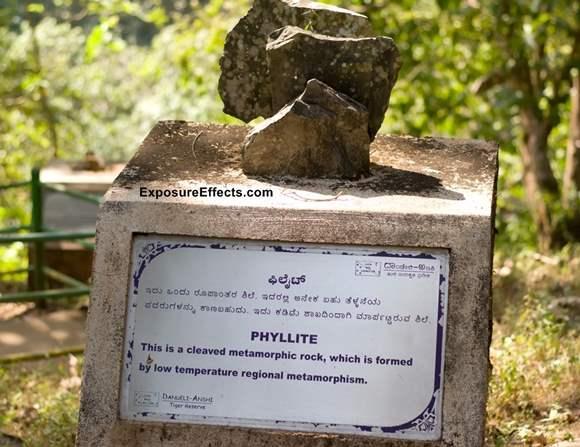 Phyllite - Rock