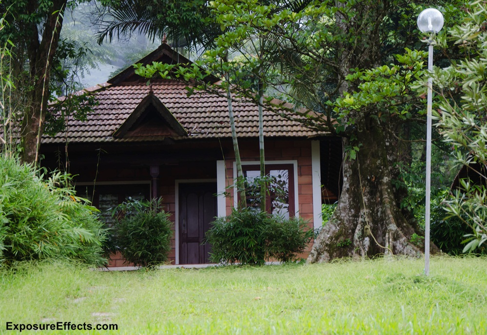 Misty Woods Coorg Resorts Cottages