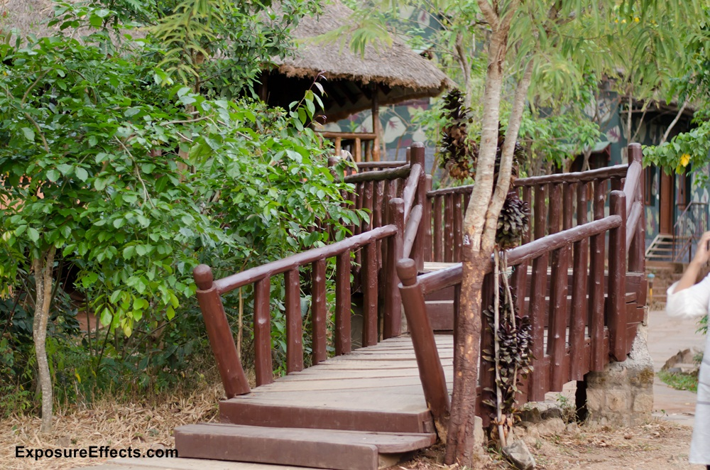 River Tern Lodge - Jungle Lodges and Resorts
