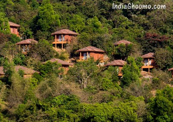 Jungle Lodges Devbagh Beach Resort Contact