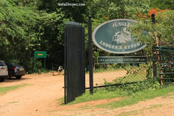 Galibore Nature Camp - Jungle Lodges