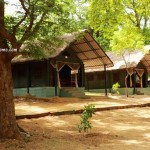 Galibore Nature Camp at Jungle Lodges