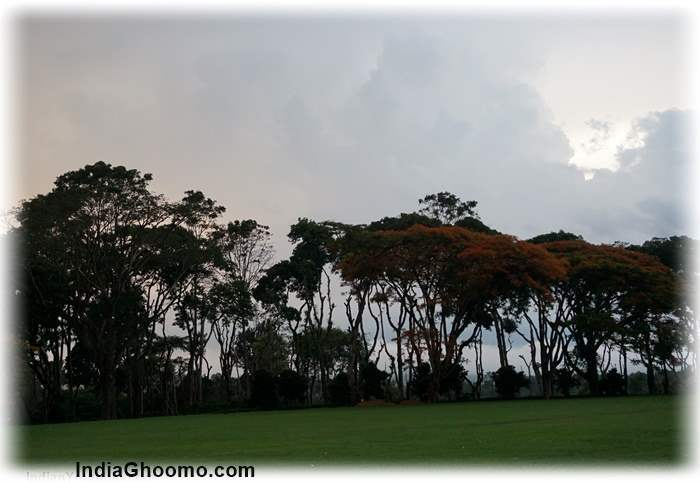 Tata Plantation-Trails Coorg review