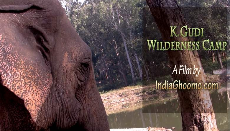 K Gudi Wilderness Camp Jungle Lodges and Resorts Review