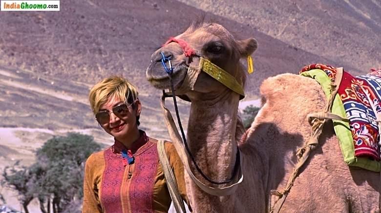 Ladakh Camel Safari - Hunder