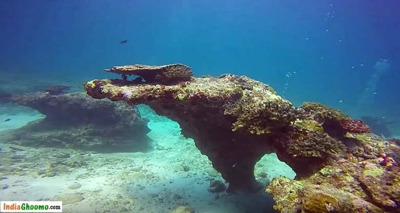 Lakshadweep Coral Island Bangaram