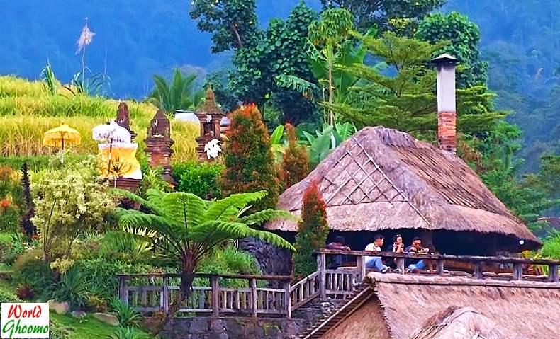 Bali Jatiluwih Rice Terraces Restaurants