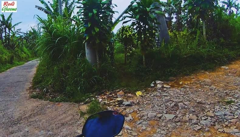 Reaching Banyumala Waterfall
