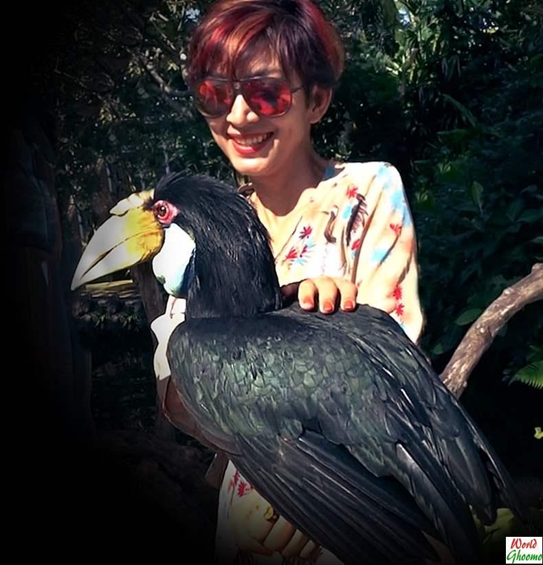 Bali Bird Park Indonesia