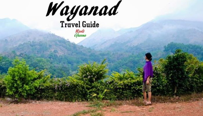 Wayanad Travel Guide | How to Explore Wayanad in 2 Days