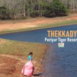 Thekkady Travel Guide | Everything You Need to Know