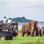 Sri Lanka Takes New steps to Promote Tourism