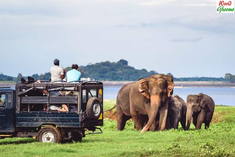 sri lanka tourism